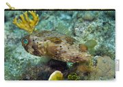 A Long-spined Porcupinefish, Key Largo Carry-all Pouch by Terry Moore