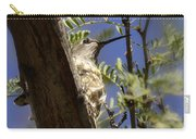 A Nesting Hummingbird Carry-all Pouch