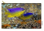 A Pair Of Juvenile Cocoa Damselfish Carry-all Pouch by Michael Wood