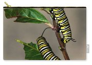 A Pair Of Monarch Caterpillars Carry-all Pouch