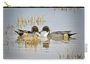 A Pair Of Northern Pintail Ducks  Carry-all Pouch