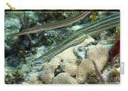 A Pair Of Trumpetfish Off The Coast Carry-all Pouch