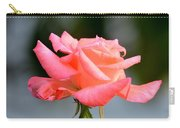 A Peachy Pink Delight Carry-all Pouch