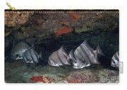 A School Of Atlantic Spadefish Carry-all Pouch by Terry Moore