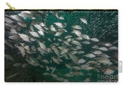 A School Of Tomtate And Glass Minnows Carry-all Pouch by Michael Wood