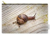 A Snail Sliding Across A Wooden Surface Carry-all Pouch by Tom Gowanlock