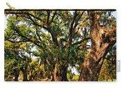 A Southern Stroll Carry-all Pouch by Steve Harrington