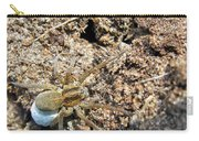 A Spider With The Egg Sack Square Carry-all Pouch