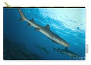 A Trio Of Whitetip Reef Sharks, Kimbe Carry-all Pouch