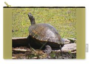 A Turtle Sunning Carry-all Pouch