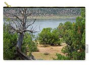 Abiquiu Lake New Mexico 2 Carry-all Pouch