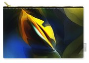 Abstract 051112 Carry-all Pouch