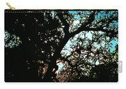 Abstract 224 Carry-all Pouch