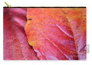 Abstract Dogwood In Autumn Carry-all Pouch