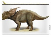 Achelousaurus Horneri, A Prehistoric Carry-all Pouch