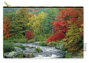 Adirondack Stream 4 Carry-all Pouch