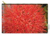 African Blood Lily Or Fireball Lily Carry-all Pouch