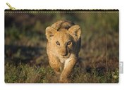 African Lion Panthera Leo Cub, Masai Carry-all Pouch