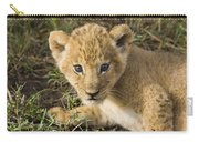 African Lion Panthera Leo Five Week Old Carry-all Pouch