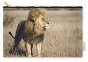 African Lion Panthera Leo Male, Khutse Carry-all Pouch