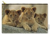 African Lion Three Cubs Resting Carry-all Pouch by Tim Fitzharris