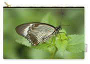 African Papilio Dardanus Butterfly Carry-all Pouch