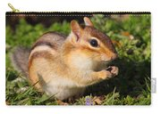 Afternoon Snack - Eastern Chipmunk  Carry-all Pouch