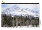 Alaska Range Peak Carry-all Pouch