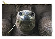 Aldabra Tortoise Carry-all Pouch