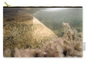 Algae In A Frozen Pond Carry-all Pouch by Ted Kinsman