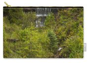 Alger Falls 1 Carry-all Pouch