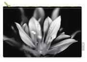 Allium Mono Carry-all Pouch