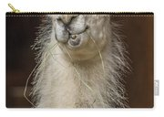 Alpaca Wiseguy Carry-all Pouch