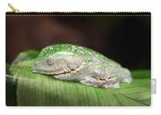 Amazon Leaf Frog Carry-all Pouch