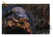 American Alligator On A Cypress Tree Carry-all Pouch