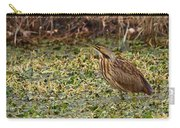 American Bittern Carry-all Pouch
