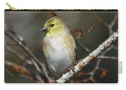 American Gold Finch Carry-all Pouch