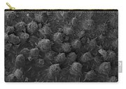 American Toad Skin, Sem Carry-all Pouch by Ted Kinsman