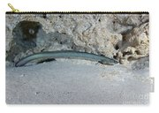 An American Eel Prowls Along The Edge Carry-all Pouch
