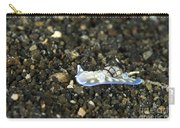 An Opisthobranch On Volcanic Sand Carry-all Pouch