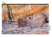Anasazi Indian Ruin - Cedar Mesa Carry-all Pouch