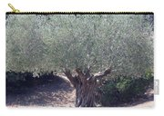 Ancient Old Olive Tree In South France Carry-all Pouch