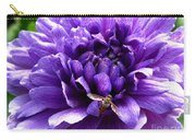 Anemone Coronaria Named Lord Lieutenant Carry-all Pouch