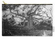 Angel Oak Carry-all Pouch
