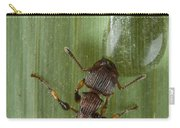 Ant Drinking From Water Droplet Papua Carry-all Pouch by Piotr Naskrecki
