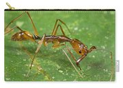 Ant Showing Large Mandibles Guyana Carry-all Pouch
