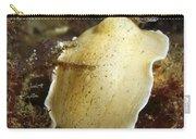 Aphelodoris Varia Sea Slug Nudibranch Carry-all Pouch