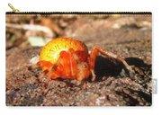 Araneus Marmoeus Carry-all Pouch