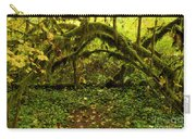 Arches In The Rainforest Carry-all Pouch
