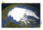 Arctic Sea Ice, 1979 Carry-all Pouch